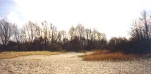 duenenspielgarten