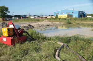 Zugeschüttet und abgepumpt: Das Biotop am Grodendamm. Foto: Imke Zwoch