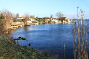 Die Freizeitgärten am Nordufer des Banter Sees sollen verschwinden. Foto: Gegenwind