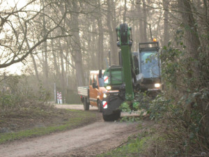 Abholzung 16-02-2015_003web