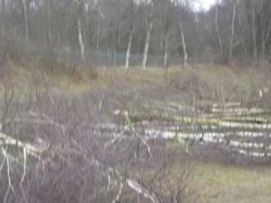 Banter See Altlastensanierung_20150220_2