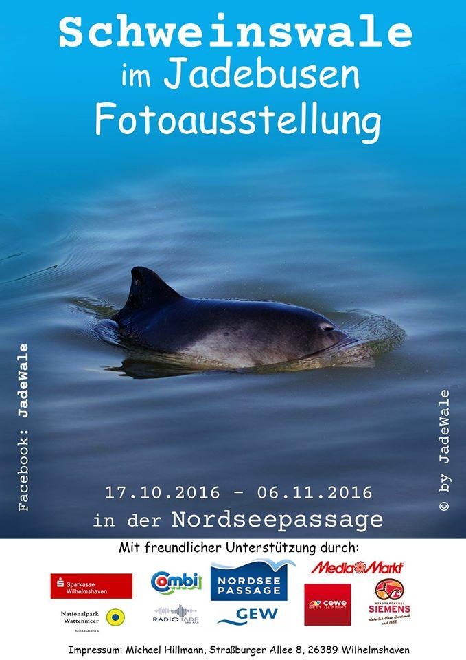 schweinswale_plakat