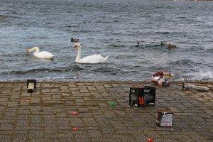Plastikmüll und andere Feuerwerksreste können Wasservögeln zum Verhängnis werden. Foto: BUND