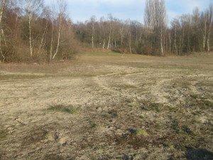 Zerfurchtes Gelände im Bereich des vormaligen Sandmagerrasens - Foto Martin